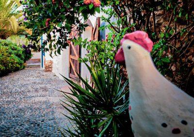 Finca Ibiza Entrance